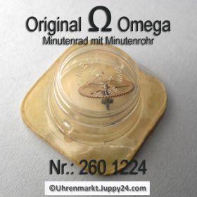 Omega Minutenrad mit Minutenrohr 260-1224 Omega 260 1224 5,61mm Cal.  30 30T1 30T2 30T2 PC 260 261 262 265 266 267 268 269